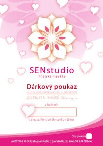 SEN-studio-Poukaz-2014-ZAMILOVANY